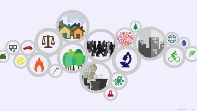 صورة ورشة عمل حول التنمية المستدامة والاقتصاد التضامني الاجتماعي بسليانة