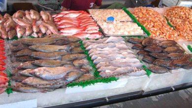 صورة تسجيل ارتفاع في صادرات منتجات الصيد البحري من حيث القيمة والكمية