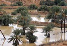 صورة ارتفاع منسوب المياه بعدة اودية بتطاوين