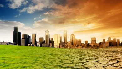 صورة البناء والتخطيط والتغيرات المناخية   تأثر وتأثير.. والتكيف لم يعد خيارا