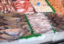 صورة صادرات منتوجات الصيد البحري تساهم في تغطية الواردات