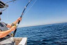 """صورة لأول مرة منذ سنوات، الرفع الكليّ لمعدّات المصائد الثابتة 'الشرافي"""" بالشابة من ولاية المهدية لضمان ديمومة المصايد الحرفية """"الصيد الساحلي والتقليدي"""""""