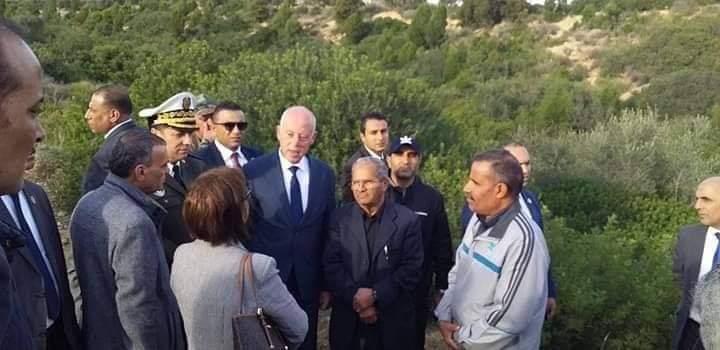 صورة في عيد الشجرة: رئيس الجمهورية يدعو الى التشجير وحماية الغابات