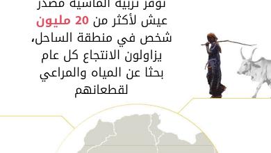 صورة تغير المناخ حقيقة واقعة: مساندة الرعاة في منطقة الساحل لبناء مستقبل قادر على الصمود