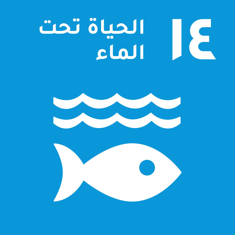 الهدف 14:حماية المحيطات