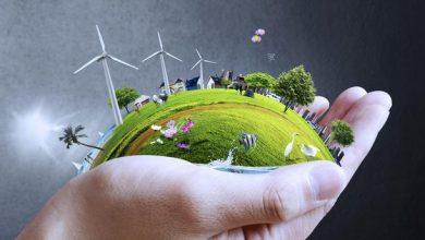 صورة يشمل 30 شابا : برنامج جديد لدعم المهن الخضراء