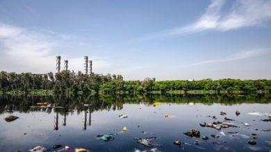 صورة ماهي مشاكل التلوث البيئي