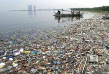 صورة ألمانيا تعتزم تنظيم مؤتمر عن تخفيض النفايات البلاستيكية بالتعاون مع غانا و الإكوادور