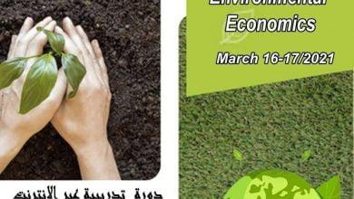 """صورة دورة تدريبية حول : """"إدارة الموارد الطبيعية والاقتصاد البيئي""""ضمن اشغال المؤتمر جيو تونس"""