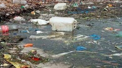صورة كيف يُِِشفى شاطئ قليبية من جريمة الديوان الوطني للتطهير؟
