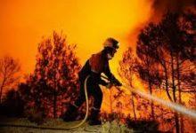 صورة القارة الأوروبية: درجات حرارة مرتفعة أدت الى الحرائق وتسجيل ضحايا