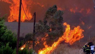 صورة قريبا : الكشف عن تجهيزات حديثة لمكافحة حرائق الغابات
