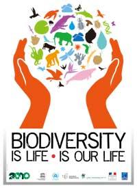 صورة التنوع البيولوجي حماية لصحّة الانسان من الجوائح