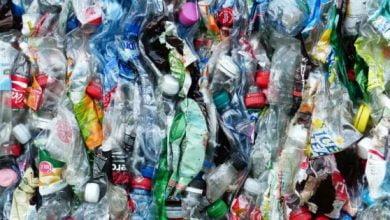 صورة الجزائر : استراتيجية وطنية لتثمين النفايات ومعالجتها