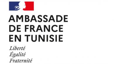 Photo de Webinaire: «Entreprendre avec la France : Les clefs pour réussir»  TUNISIE : 1er investisseur Africain en France en 2020
